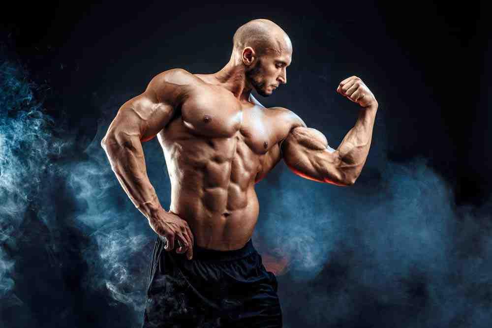 Comment construire rapidement vos bras chez vous sans équipement?