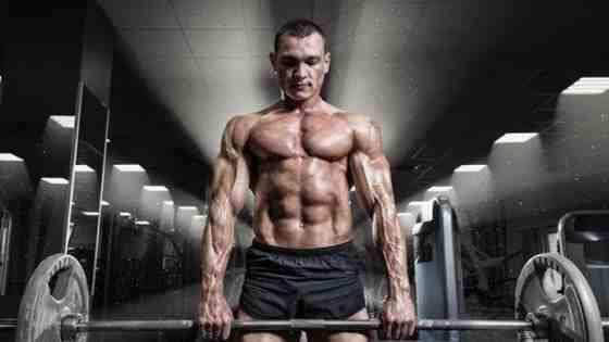 Quel muscle travaille ensemble?