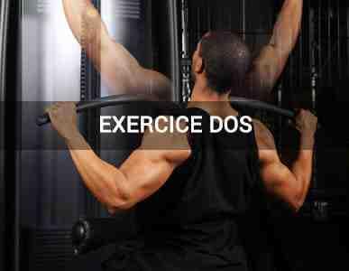 Quels groupes musculaires travaillent ensemble?