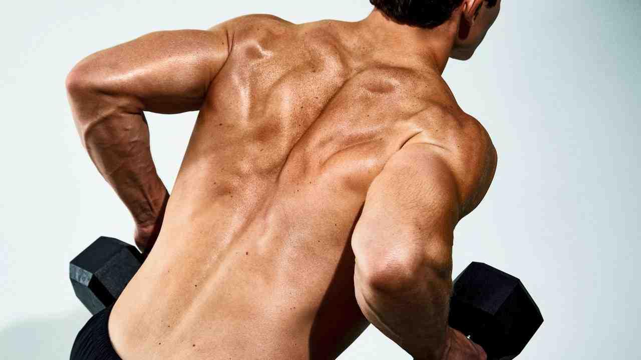 Quels muscles travailler en même temps ?