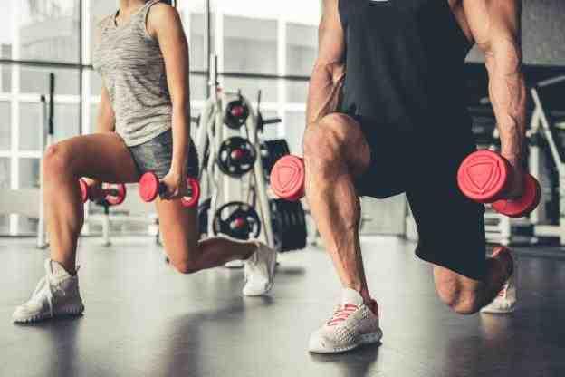 Quels sont les 6 groupes musculaires?