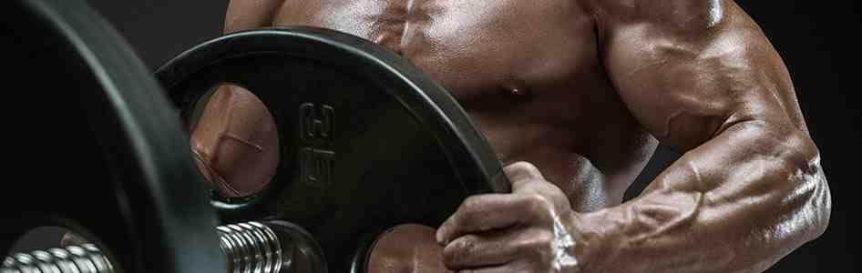 À quelle fréquence est la salle de gym?