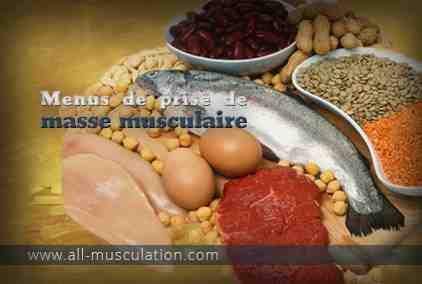 Comment nourrir naturellement vos muscles?