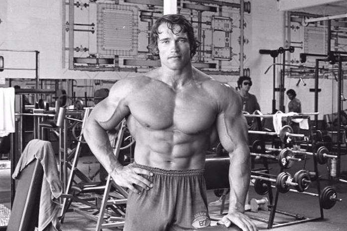Quel est le produit pour construire le muscle plus rapidement?