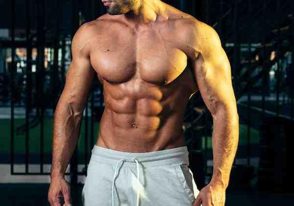 Quelle est la meilleure protéine de renforcement musculaire?