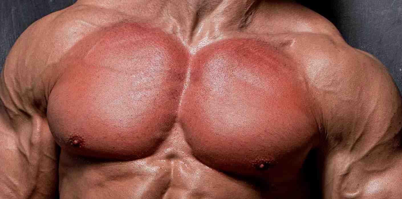 Quels sont les meilleurs exercices de musculation?