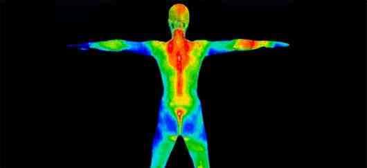 Qu'est-ce qu'un muscle faible dans le corps humain?