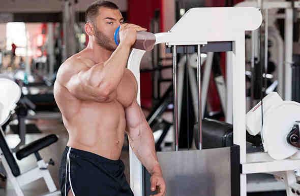 Quel est le meilleur produit de renforcement musculaire?