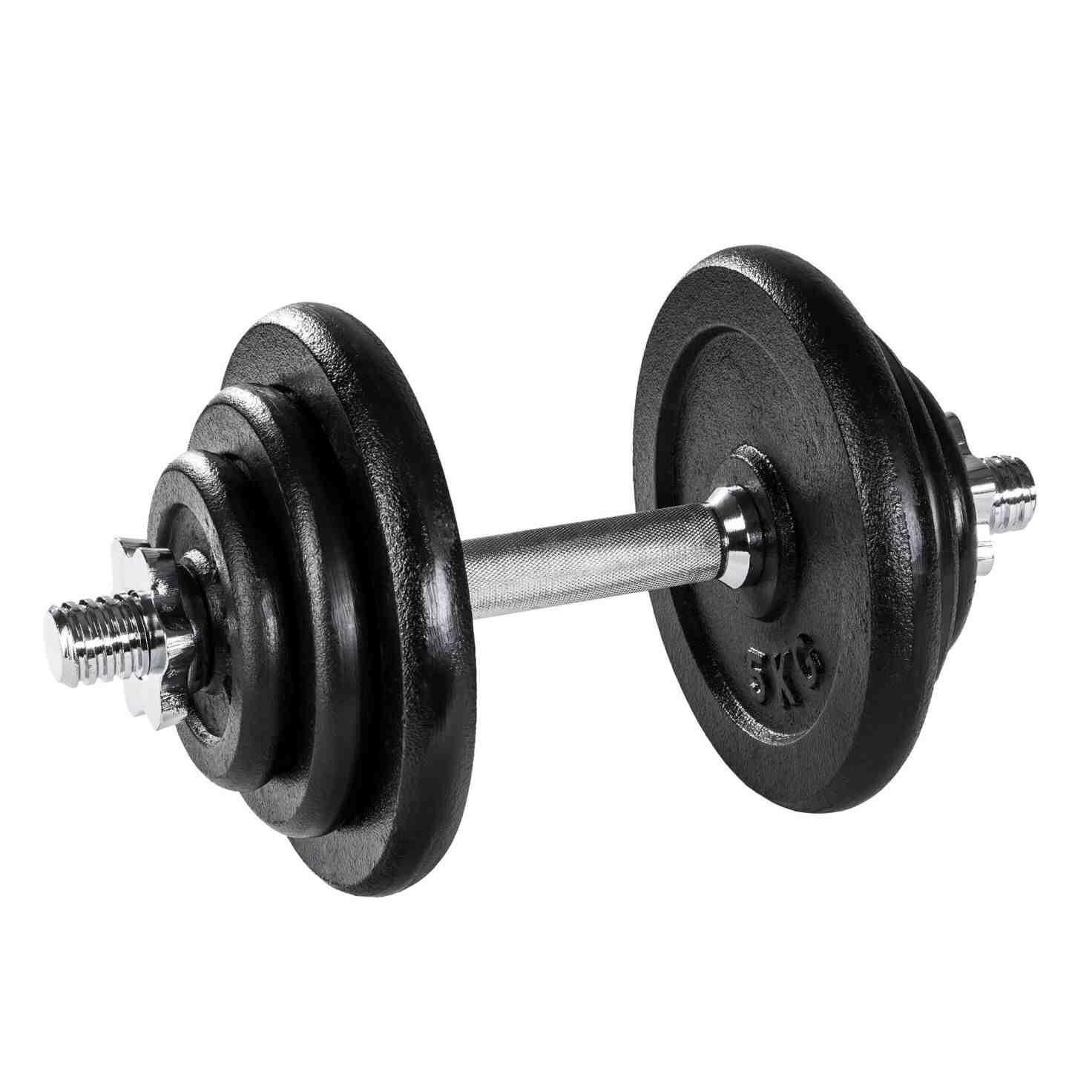 Quel est le poids des biceps?