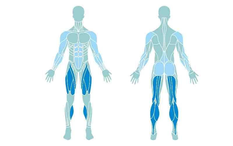 Quel sport pour renforcer tout le corps?