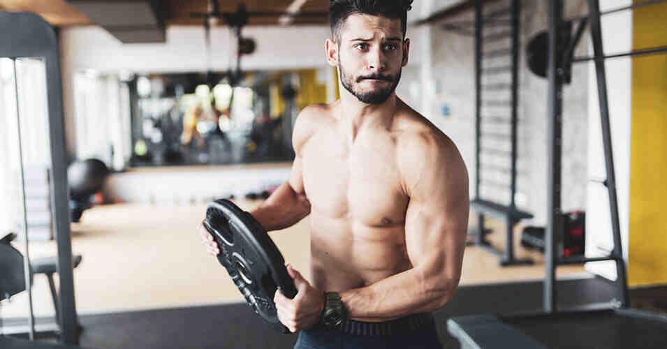 Quelle est la meilleure protéine pour développer les muscles?