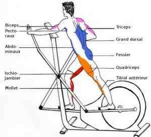 Comment utiliser le vélo elliptique pour perdre du poids?